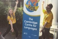 SAOs with CCL sign